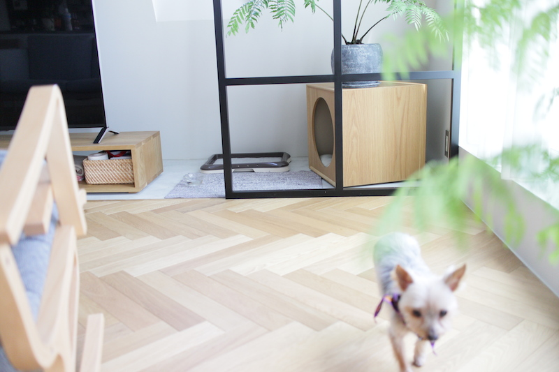 犬小屋4.JPG