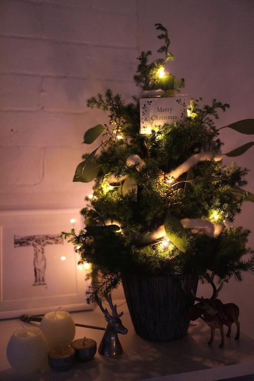 クリスマスライト2.JPG