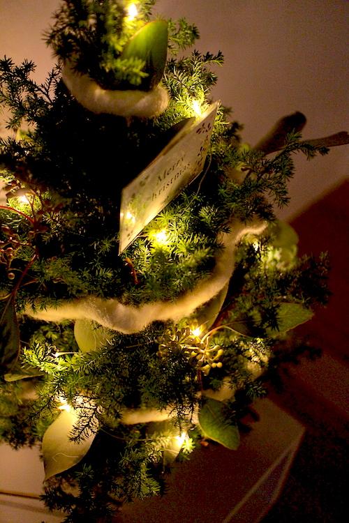 クリスマスライト3.JPG