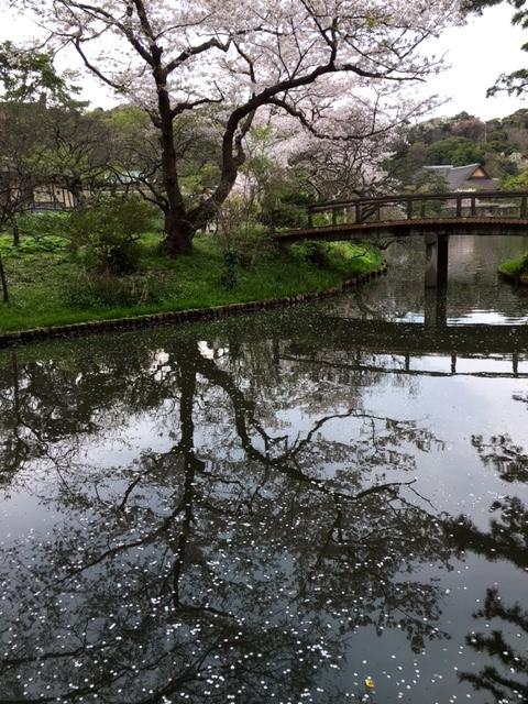 三渓園10.JPG